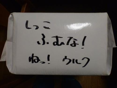 P1060027_2