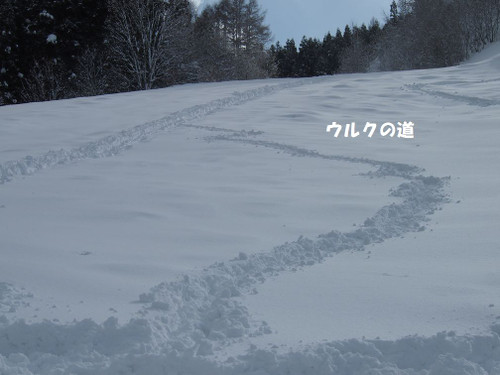 P1024751