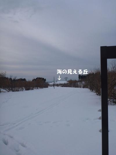 P1070893